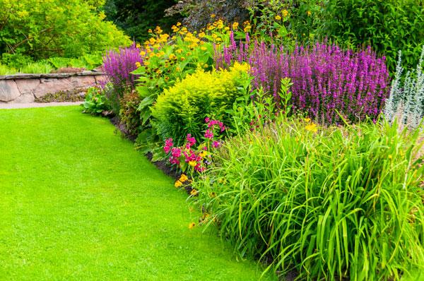 Landscape gardening ripon landscapes for How to landscape a garden